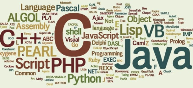 Which Programming Languages are Useful for Hacking