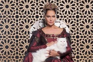 Valide Safiye si pisica