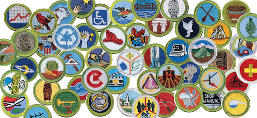 Earning a Merit Badge from the Boy Scouts of America