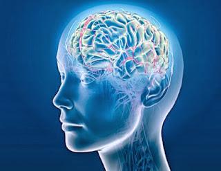 7 Obat Sehat dan Alami Untuk Mencerdaskan Otak Kita