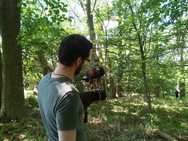 http://www.ablackbirdsepiphany.co.uk/2018/07/our-day-of-falconry-with-john-dowling.html