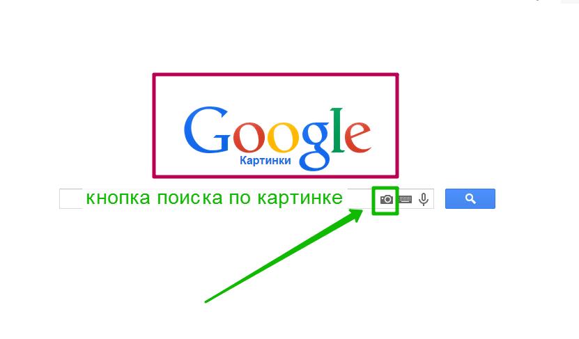 позаботились кнопка найти картинку в гугле нулевых