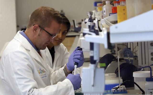 Βιολόγοι μετέφεραν μνήμη από ένα πειραματόζωο σε άλλο