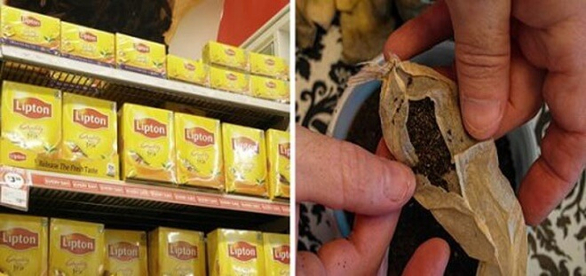 Caution! Avoid These Popular Tea Bags That Contain ILLEGAL Amounts Of Deadly Pesticides