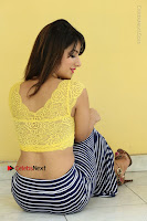 Cute Telugu Actress Shunaya Solanki High Definition Spicy Pos in Yellow Top and Skirt  0390.JPG