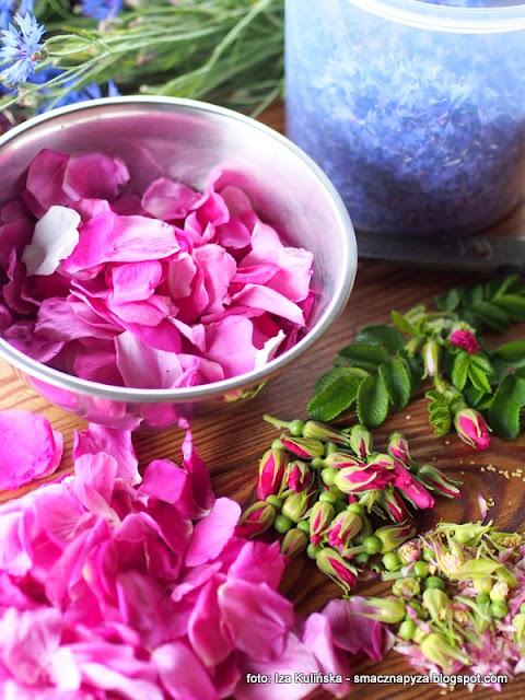 roza pomarszczona, chaber blawatek, wierzbowka kiprzyca, kwiaty jadalne, rosliny jadalne, przetwory, podlasie, laka, weekend