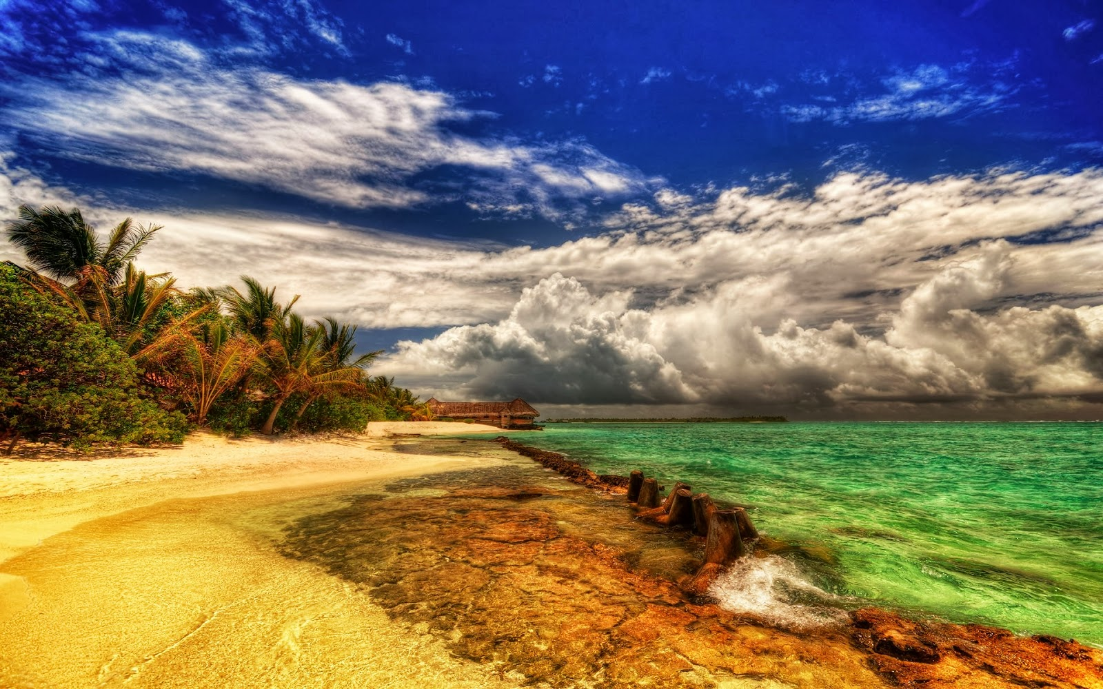 natural beach pretty wallpaper - photo #32