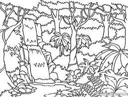 para pintar, dibujos, bosque, dibujos animados
