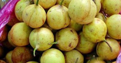 Columbus bahwasanya mendarat di Kepulauan Karibia di Amerika Tengah Sejarah perdagangan buah pala