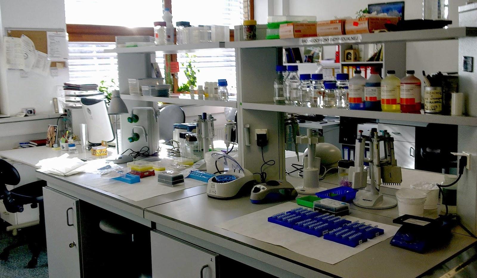 Pengertian dan Definisi Laboratorium