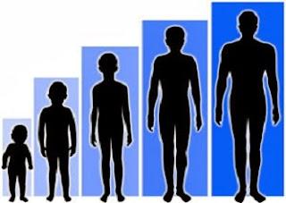 tabel perbedaan pertumbuhan dan perkembangan,perbedaan pertumbuhan dan perkembangan pada tumbuhan,perbedaan pertumbuhan dan perkembangan dalam psikologi,peserta didik,
