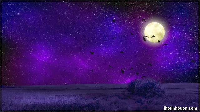 ảnh trăng đêm buồn