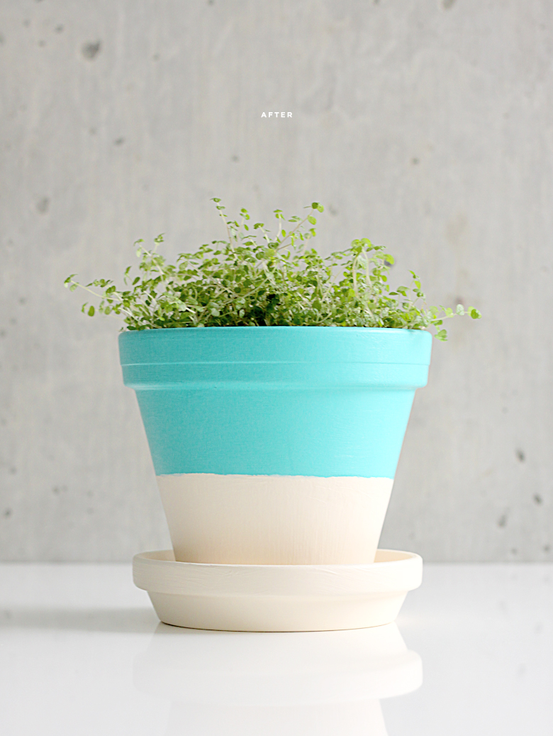 beautiful diy flower pot ideas - lines across