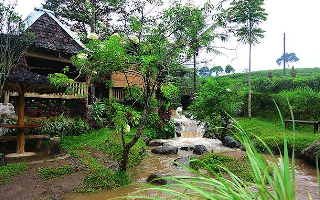 Aliran sungai kecil di dekat Resto Omah Kodok yang digunakan untuk tubing