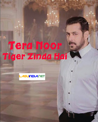 Tera Noor - Tiger Zinda Hai