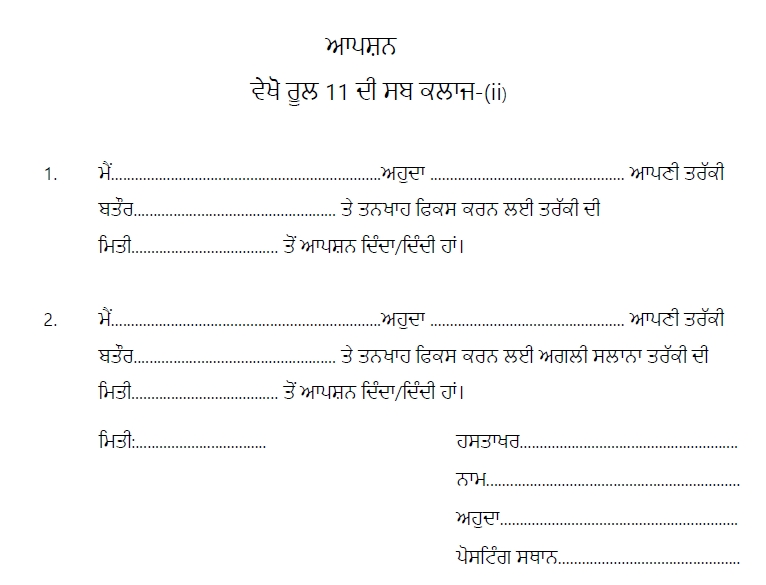 Punjab Govt  Notifications and Circulars: How to Fill Option Form