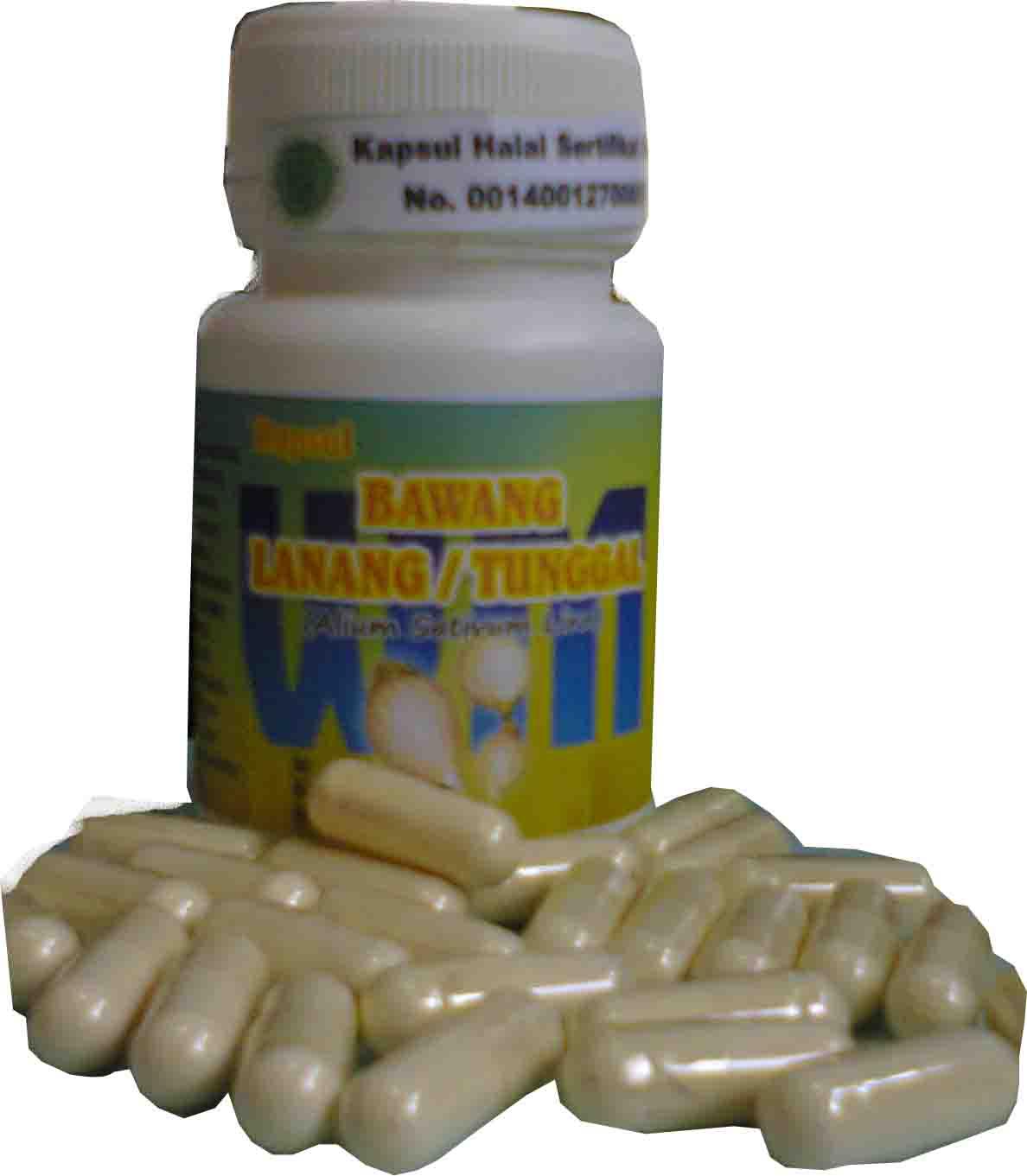 obat kuat kapsul bawang lanang