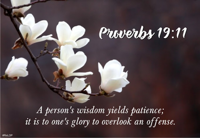 A persons wisdom Proverbs