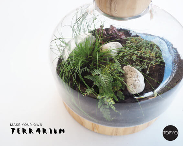 Make Your Own Terrarium by TOMFO blog featured in The Sunday Brunch Magazine - September 2015 Edition