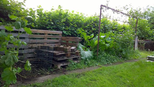 der Kompostplatz entlang der Haselnußhecke - Schatkammer des Gartens (c) by Joachim Wenk