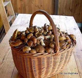 http://smacznapyza.blogspot.com/2013/07/maslaki-obierac-czy-nie-obierac-oto.html