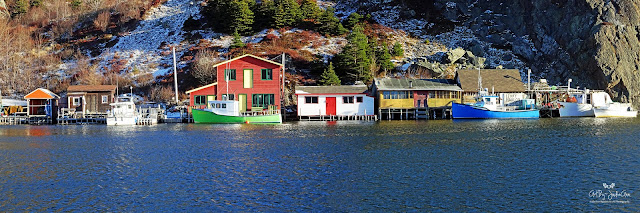 Colorful Homes in St. John's