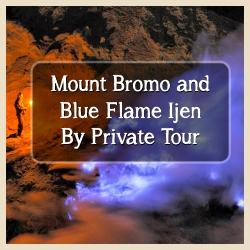 Bromo and Blue Fire Ijen By Private Tour