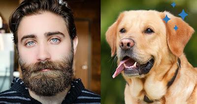Votre copain a-t-il une barbe? Cela pourrait avoir plus de bactéries que les chiens