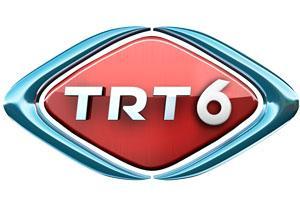 trt 6 logo