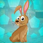 G4K Cute Rabbit Escape