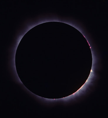 Solar Prominences During Totality