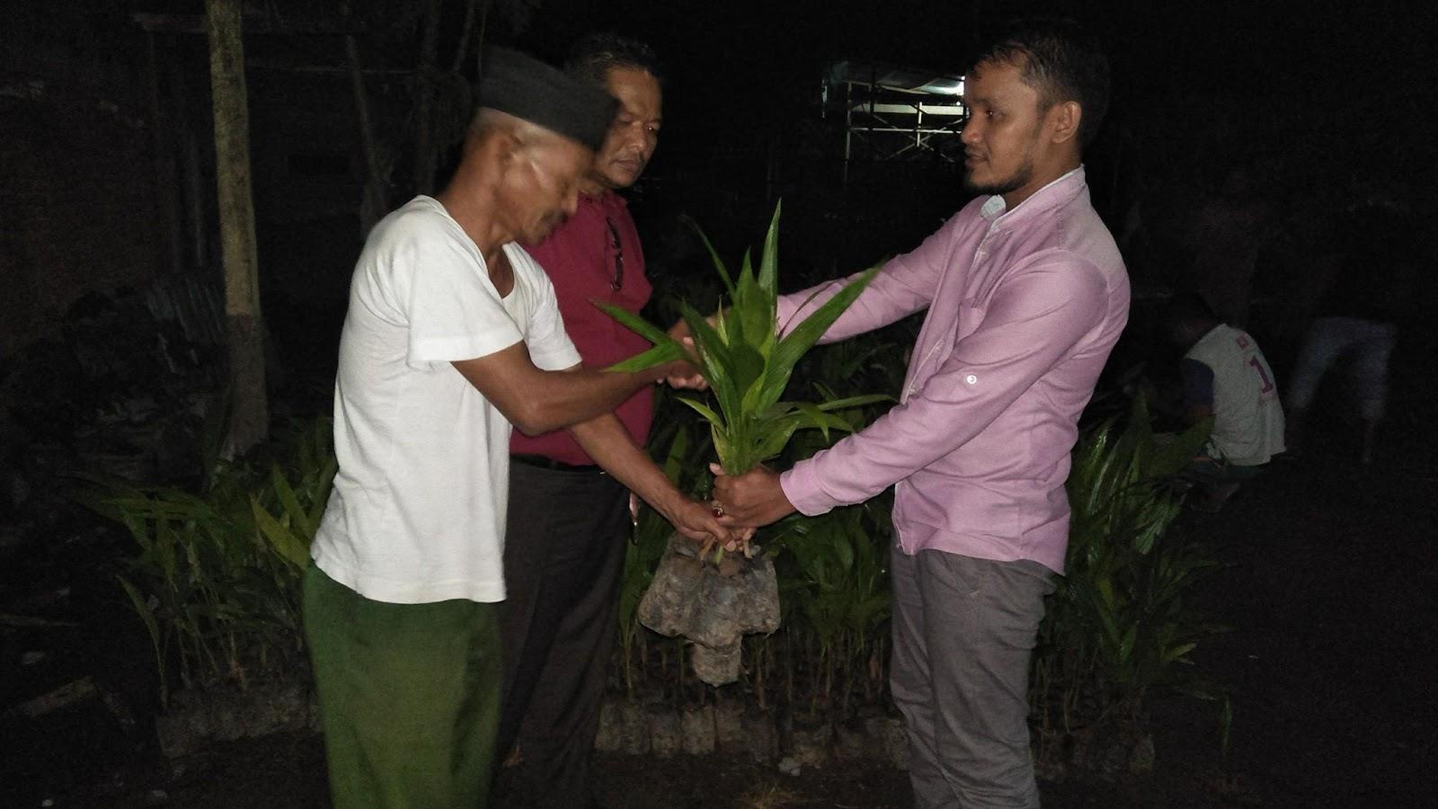 LPD Salurkan Bibit Pinang Hibrida Kepada Kelompok Perkebunan Bener Meriah Bantuan dari BRA