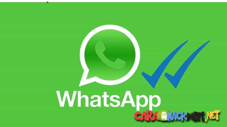 cara whatsapp tidak kelihatan online