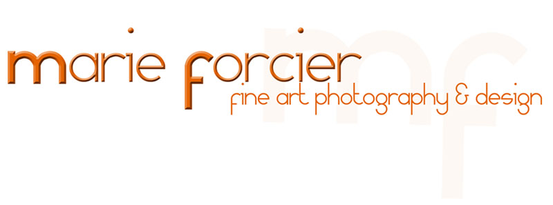 Marie Forcier Photography