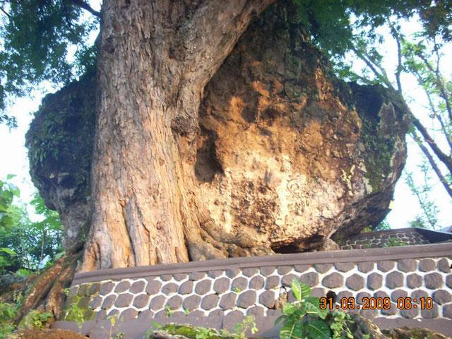Watu Plinteng Semar