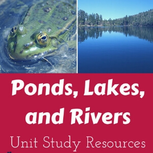 Ponds, Lakes and Rivers Unit Study