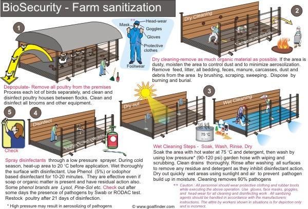 An toàn sinh học trong trang trại.