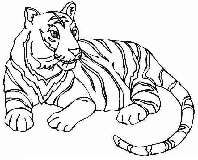 Imagenes De Animales Para Colorear Tigre Imagui