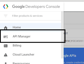 Google Developer Console API Manager