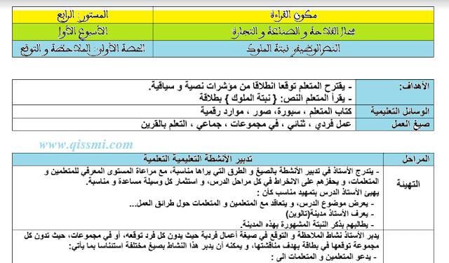 جذاذة النص الوظيفي نبتة الملوك المستوى الرابع