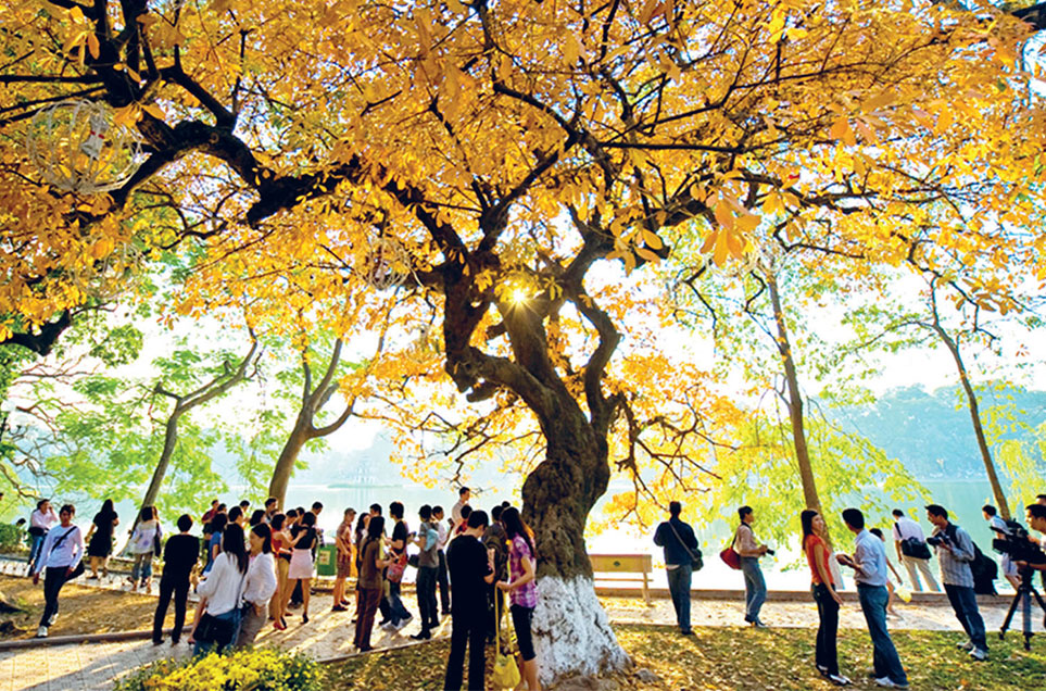 What to do in Hanoi Autumn