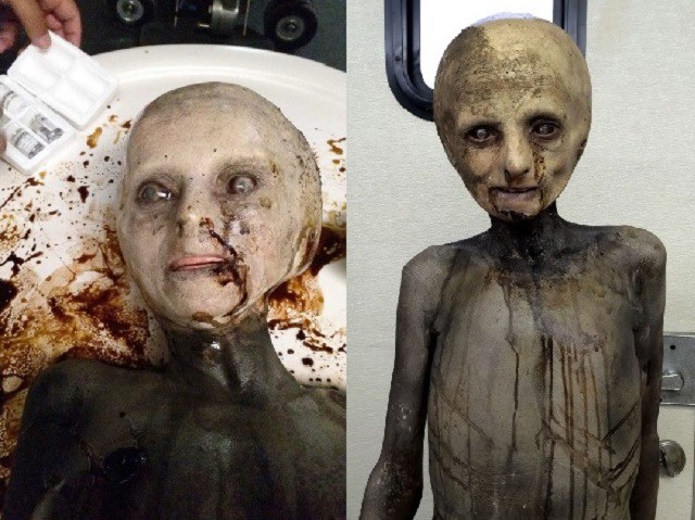 The X Files TV show Alien prop looks real.