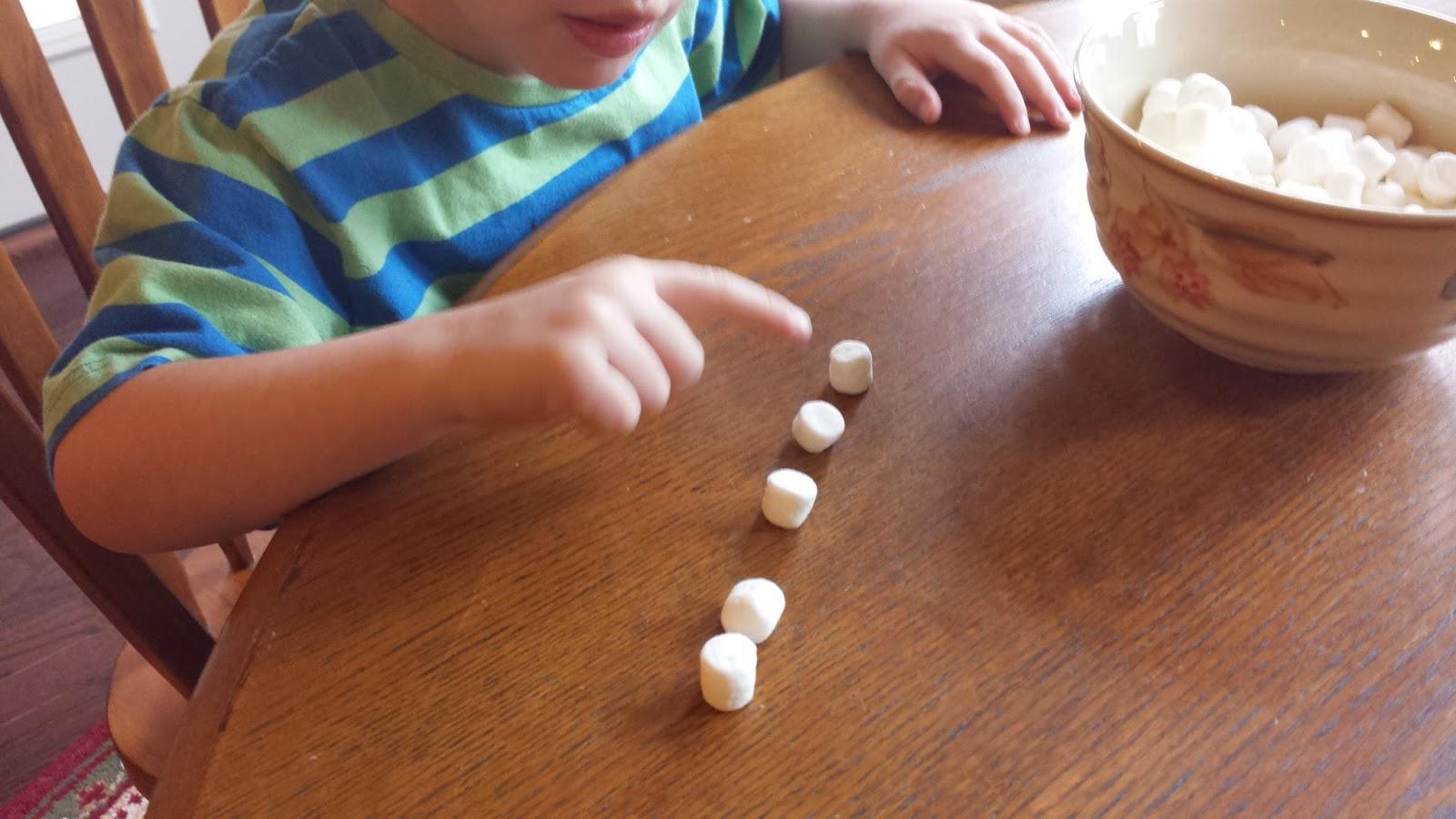 Maggie S Big Home Marshmallow Math