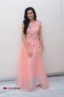 Actress Neha Hinge Stills in Pink Long Dress at Srivalli Teaser Launch  0152.JPG