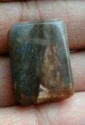 batu fosil kayu