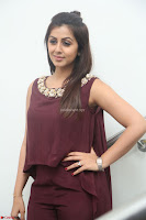 Nikki Galrani in a Brown Shining Sleeveless Gown at Nakshatram music launch ~  Exclusive 003.JPG