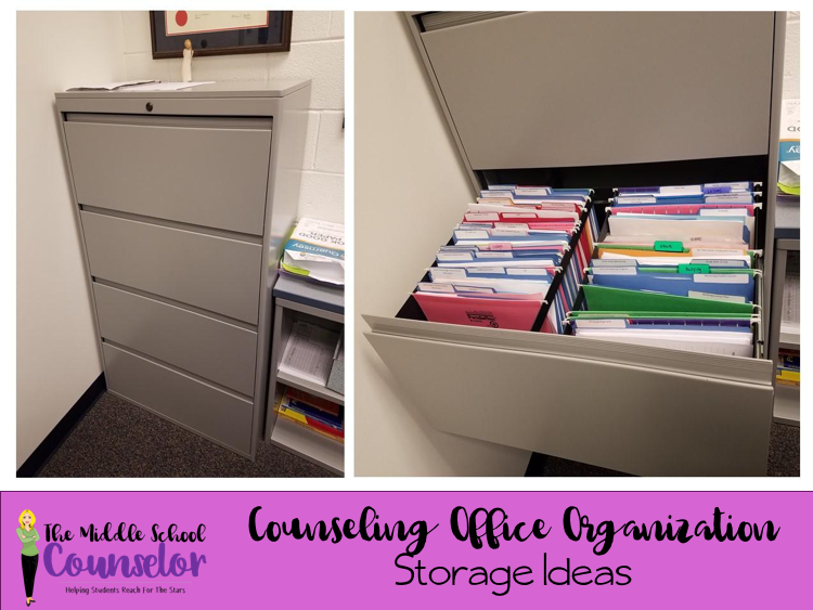 Tracy Is A High School Counselor, And Has Less Of A Need For Bin Storage,  But Needs Organized Storage For Student Files And Lessons.