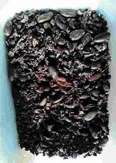 coklat Hitam Aceh