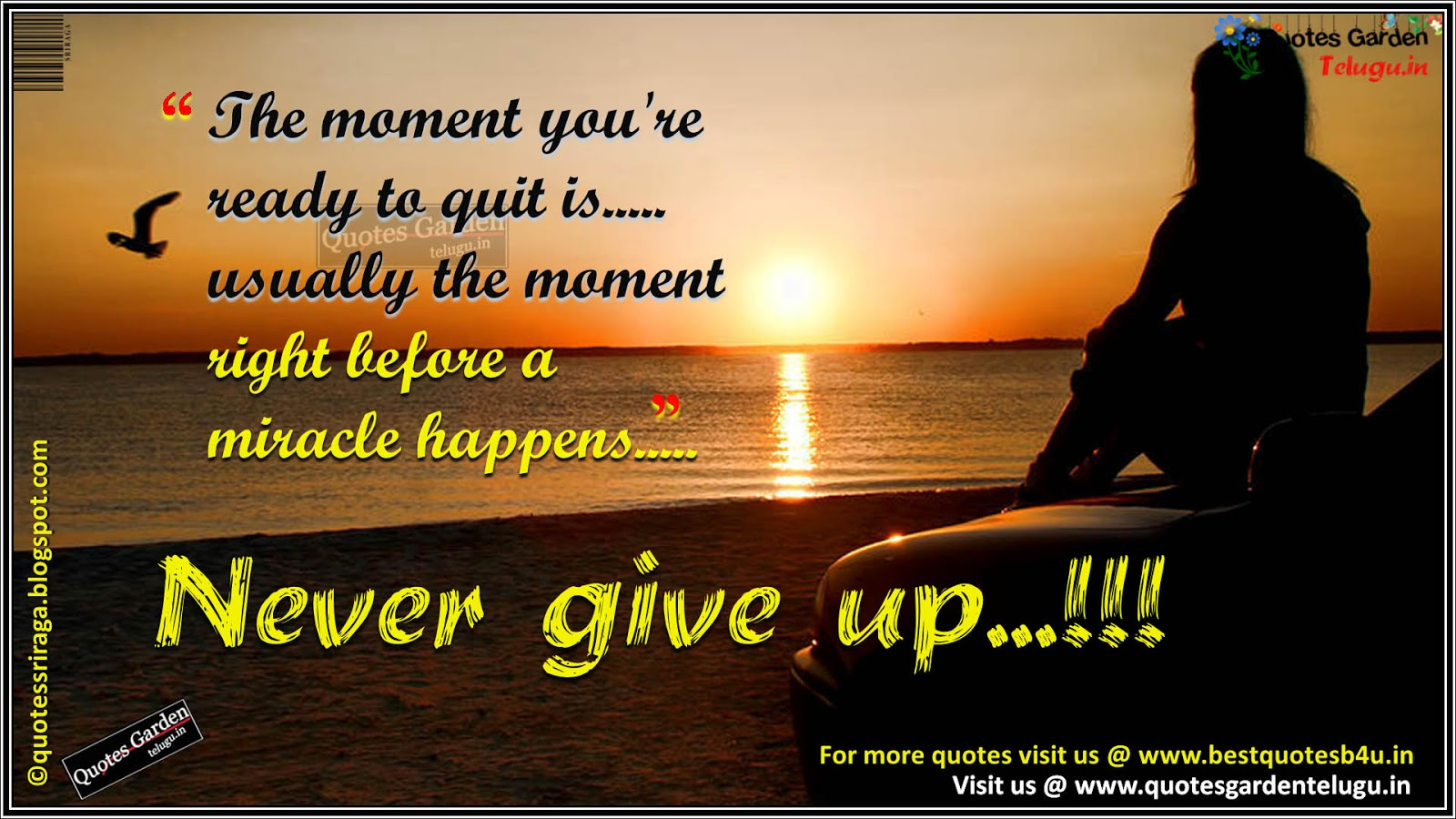 Never Give Up Quotes With Heart Touching Images Quotes