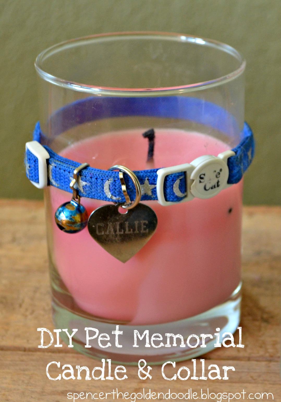Finest Spencer the Goldendoodle: Pet Memorial Book, DIY, Paying it Forward JF15
